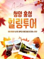 '광역시티투어(서울·경기)' 타고 청양으로 놀러 오세요~