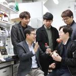 KAIST, 투명·유연 디스플레이 제작 고분자 합성 성공