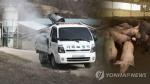"""내일 전국 돼지 농가 일제 청소…""""구제역·ASF 예방"""""""