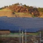 논밭 옆까지 밀고 들어와…농심 태우는 태양광 발전