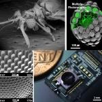 KAIST, 곤충 눈 구조 모방한 '초박형 카메라' 제시