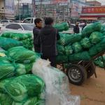사라져 가는 김장…김장대신 포장김치 소비증가