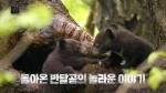 '야생의 곰' 고스란히…오랜만에 자연 다큐