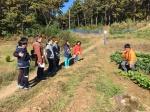 '홍성을 걷다'…홍주성 천년여행길 月 2000여명 방문