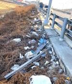 아산시 둔포면…관광객 쓰레기통이 된 '소중한' 삶의 터전