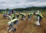 충주시자원봉사센터 '둥글레가족봉사단' 15가족 모집