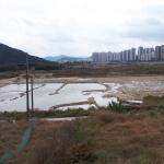 대전 갑천 '도안호수공원' 친수구역 조성사업 급물살