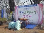 '천년의 효심' 기리다…당진 면천은행나무 목신제