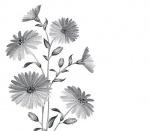 영동군 '봄꽃'으로 물들다