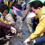 대전 중구 자원봉사센터, 정생동 행복나눔농장서 감자심기 봉사활동