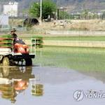 다가오는 봄 갈수기…커지는 가뭄 걱정