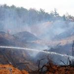 대전 유성구 대정동 야산서 산불… 2시간 만에 진화
